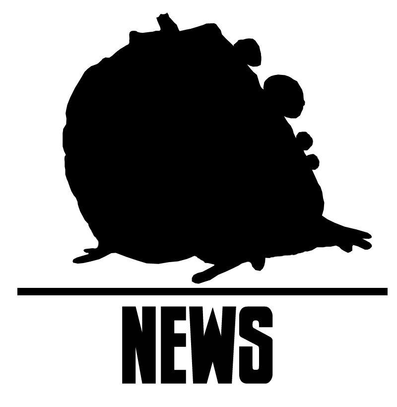 Gromp News